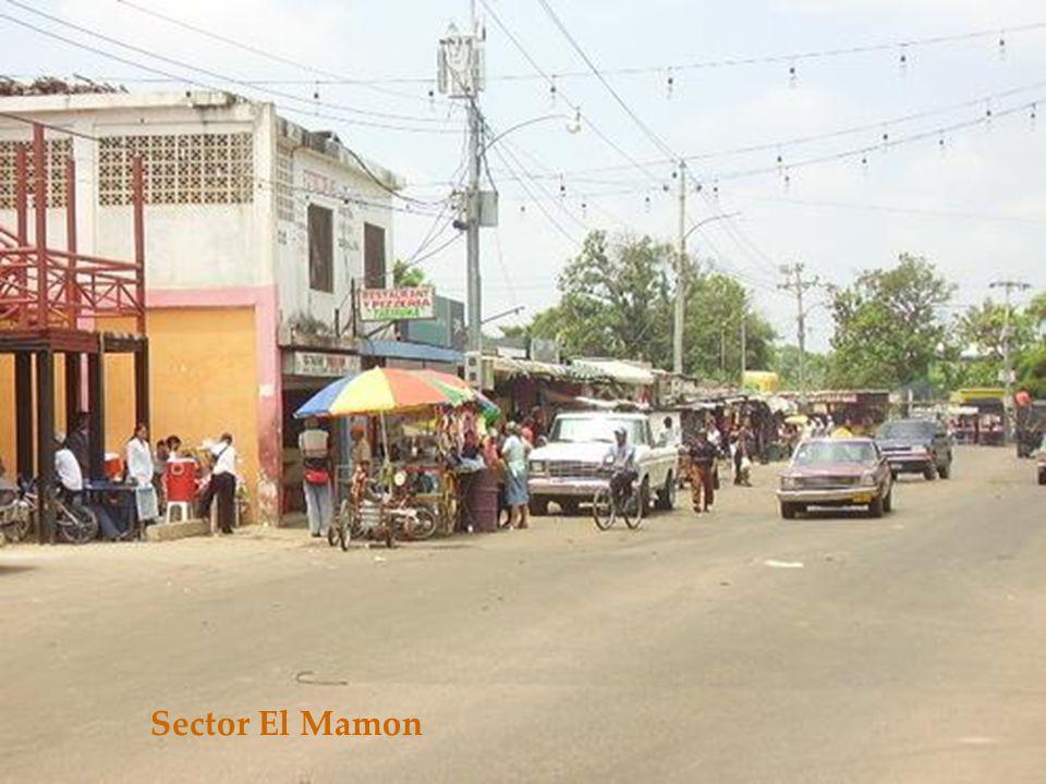 Sector El Mamon