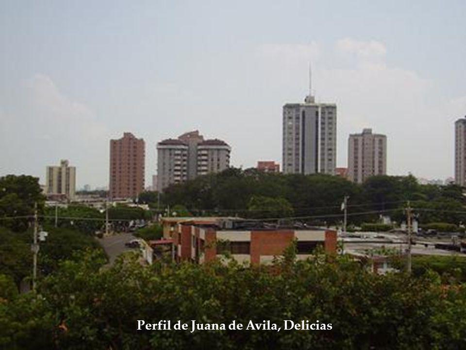 Perfil de Juana de Avila, Delicias