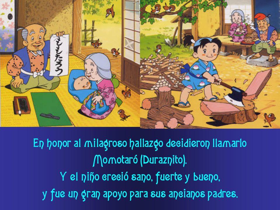 En honor al milagroso hallazgo decidieron llamarlo Momotaró (Duraznito).