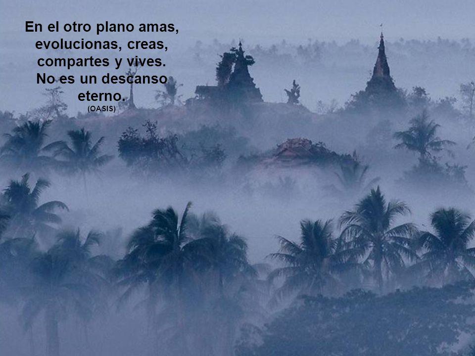 En el otro plano amas, evolucionas, creas, compartes y vives