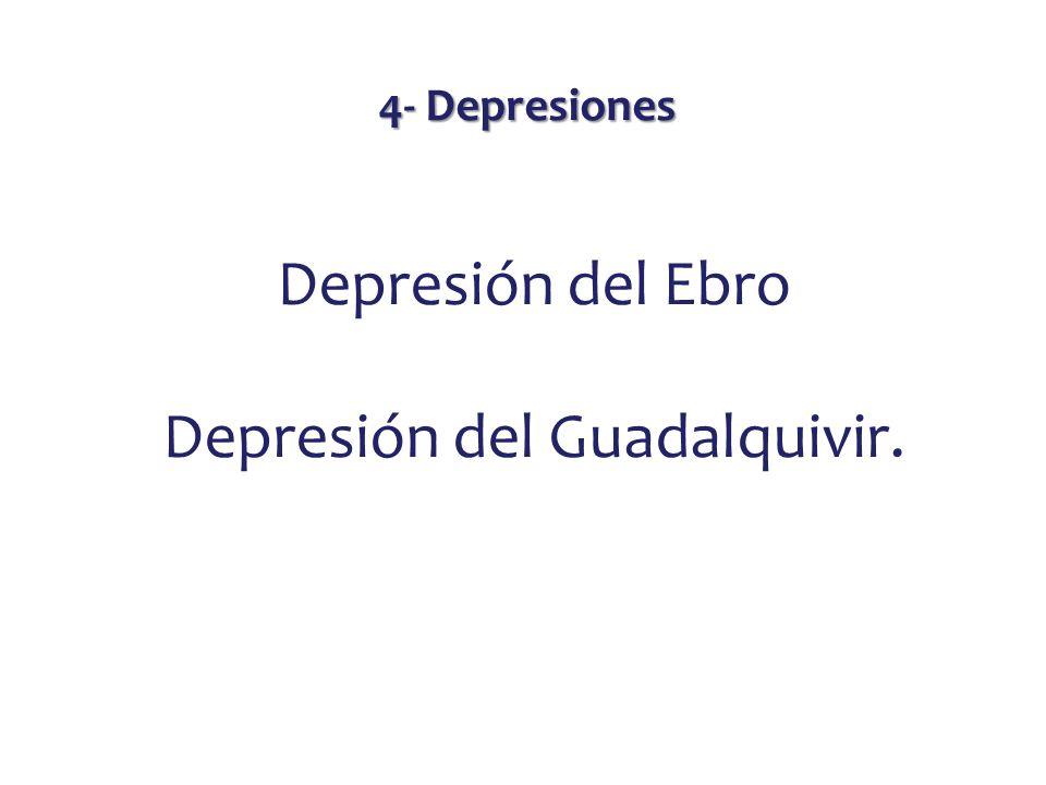 Depresión del Guadalquivir.
