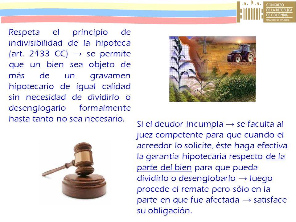 Respeta el principio de indivisibilidad de la hipoteca (art