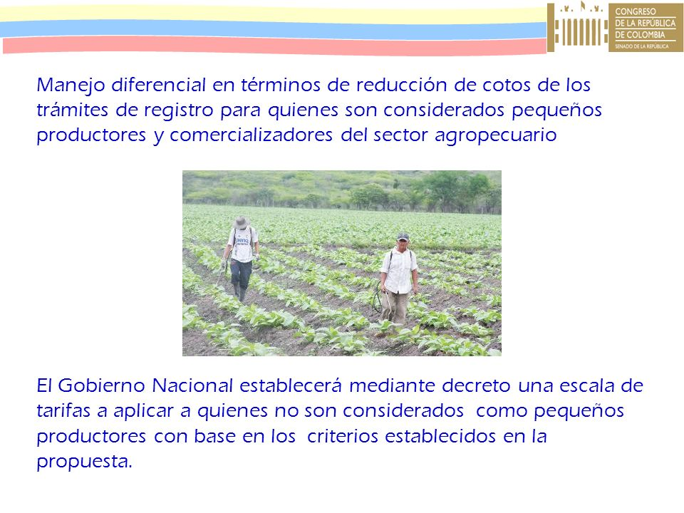 Manejo diferencial en términos de reducción de cotos de los trámites de registro para quienes son considerados pequeños productores y comercializadores del sector agropecuario