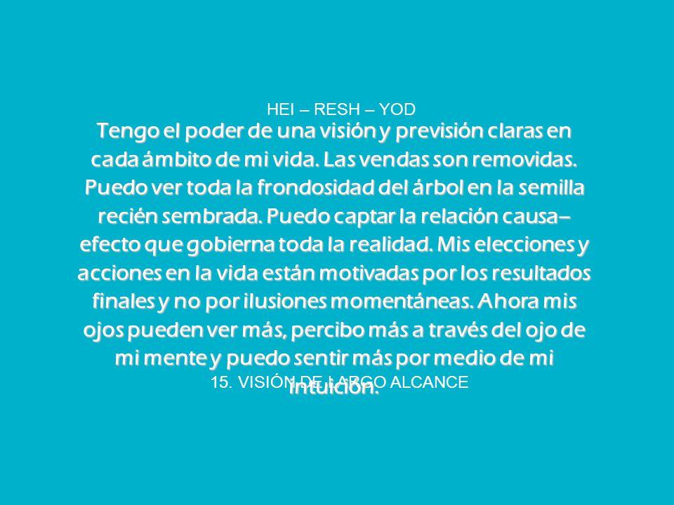 15. VISIÓN DE LARGO ALCANCE