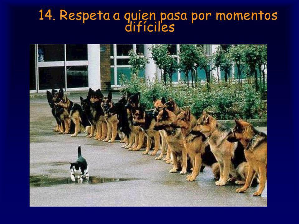 14. Respeta a quien pasa por momentos difíciles