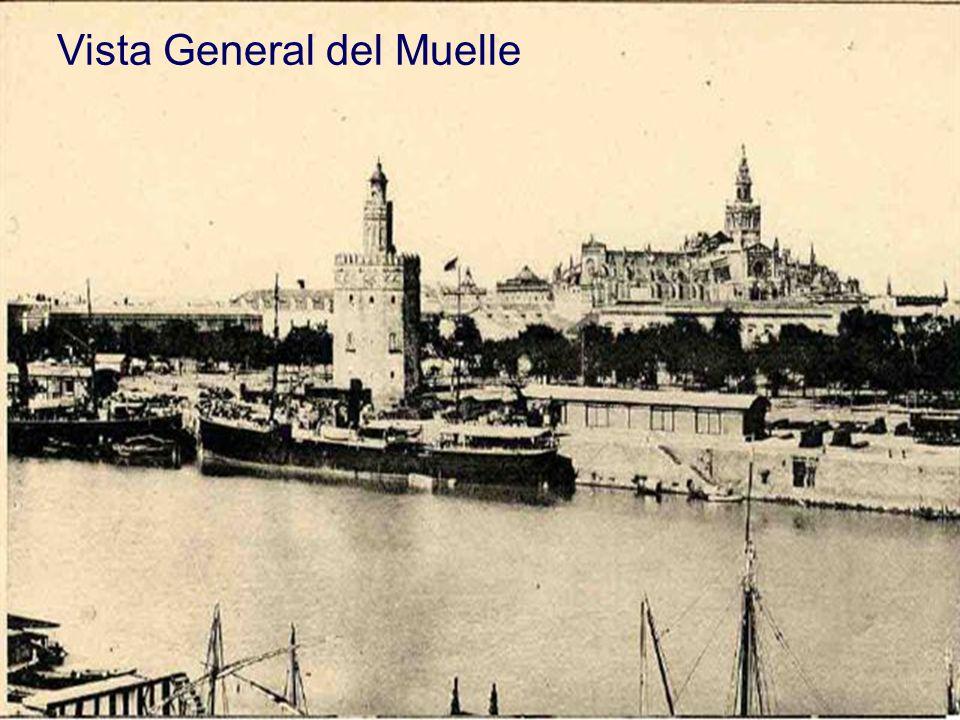 Vista General del Muelle