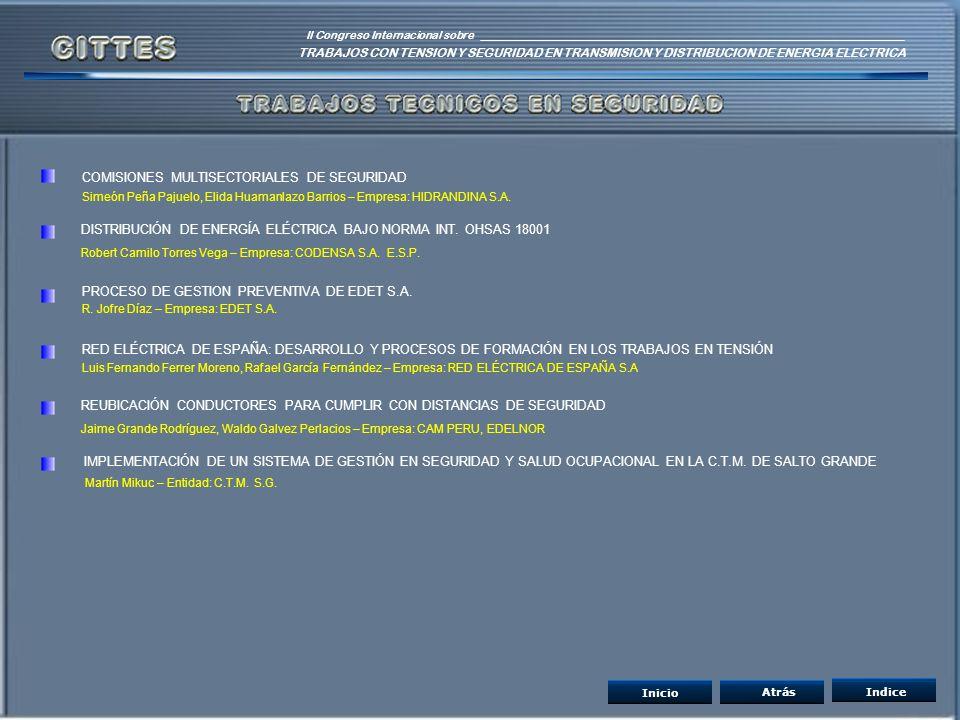 COMISIONES MULTISECTORIALES DE SEGURIDAD