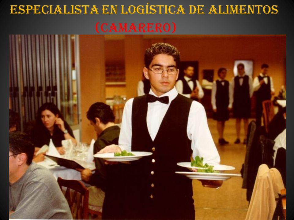 Especialista en Logística de Alimentos