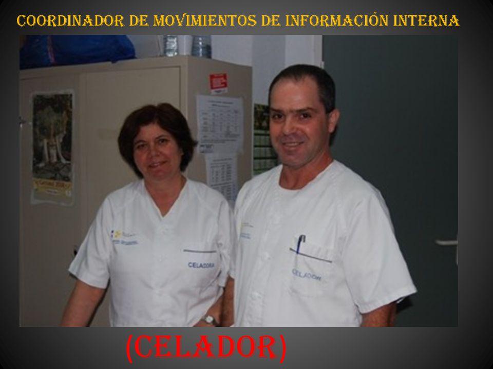 Coordinador de Movimientos de Información Interna