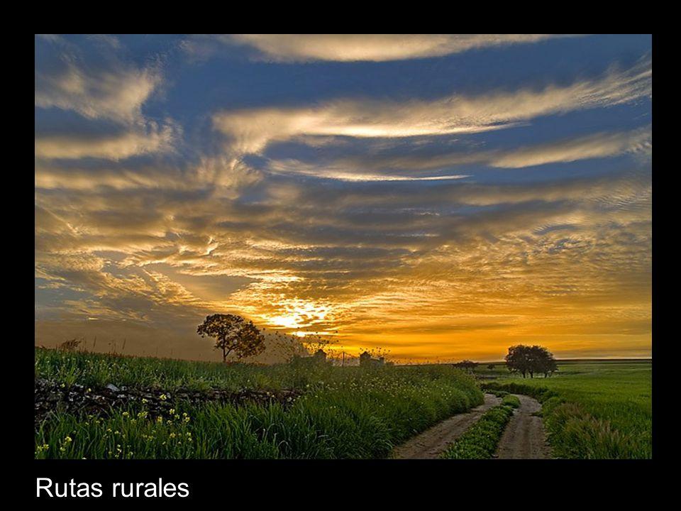Rutas rurales
