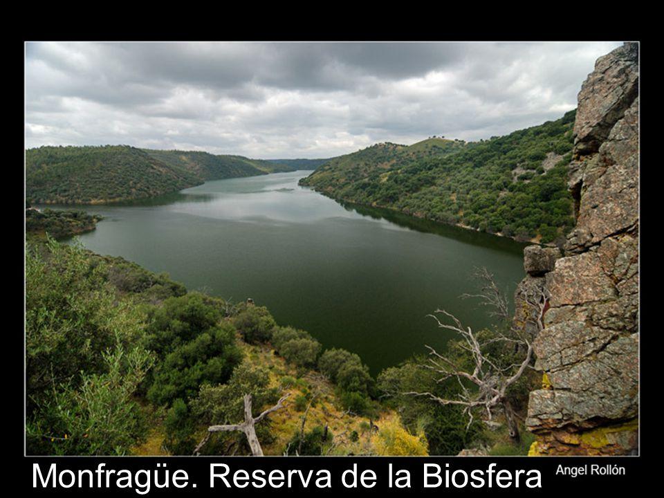 Monfragüe. Reserva de la Biosfera