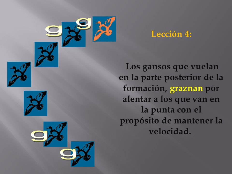 g g. Lección 4: