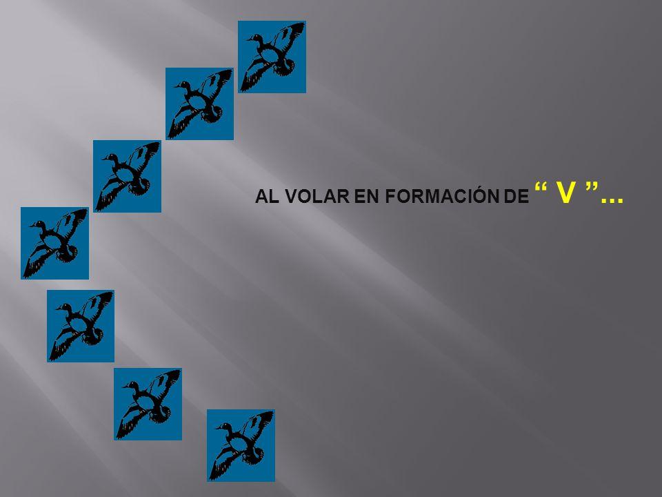AL VOLAR EN FORMACIÓN DE V ...
