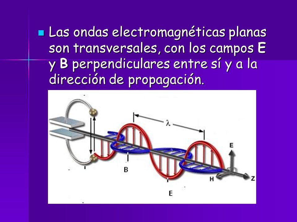 Las ondas electromagnéticas planas son transversales, con los campos E y B perpendiculares entre sí y a la dirección de propagación.
