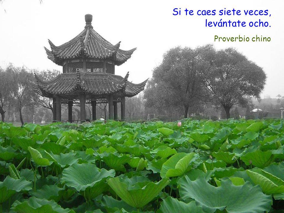 Si te caes siete veces, levántate ocho. Proverbio chino