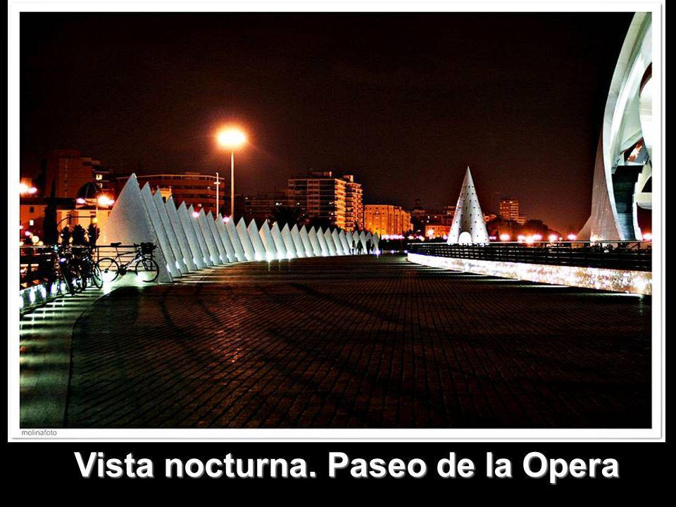 Vista nocturna. Paseo de la Opera