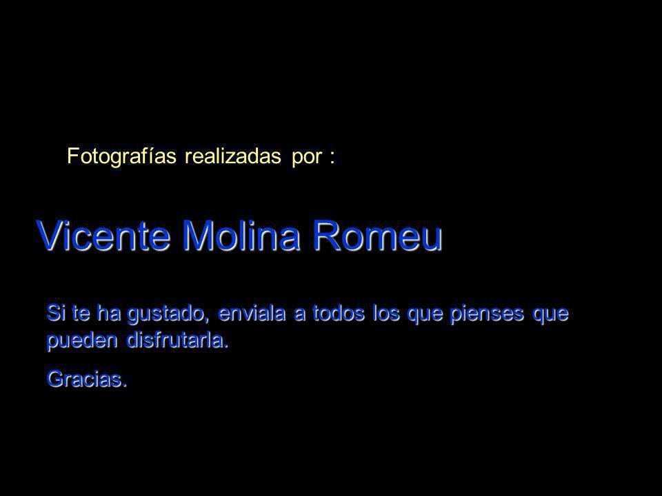Vicente Molina Romeu Fotografías realizadas por :