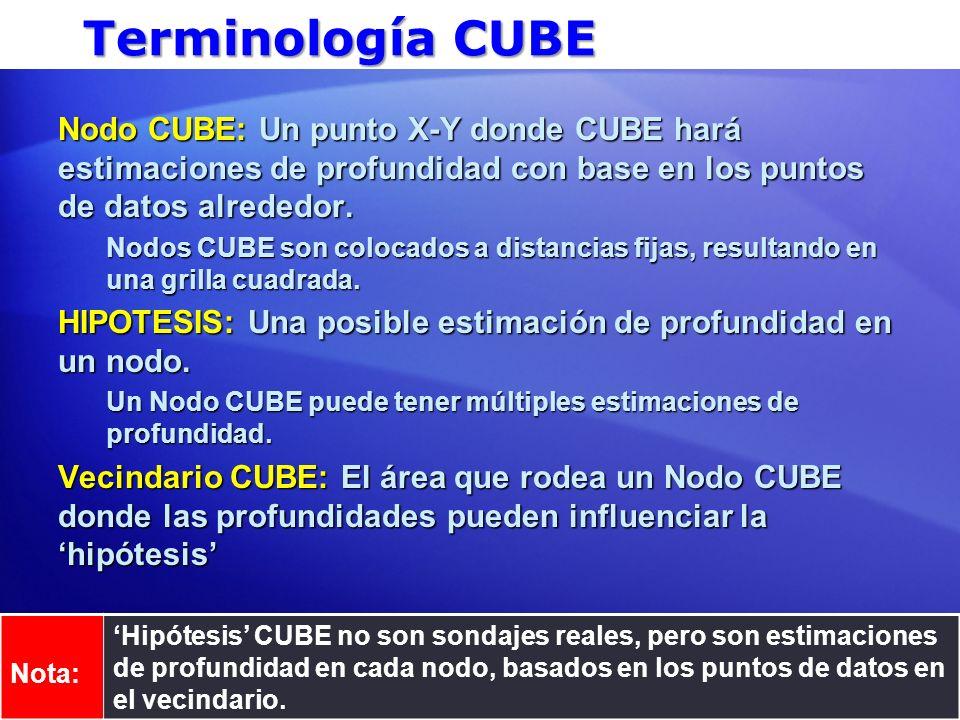 Terminología CUBE Nodo CUBE: Un punto X-Y donde CUBE hará estimaciones de profundidad con base en los puntos de datos alrededor.