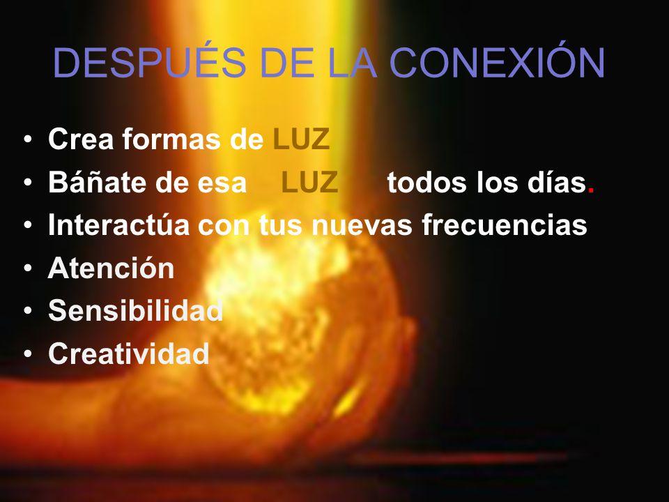 DESPUÉS DE LA CONEXIÓN Crea formas de LUZ