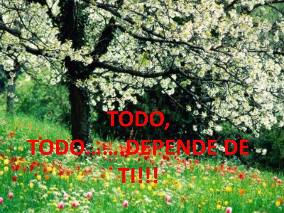 TODO, TODO…….DEPENDE DE TI!!!