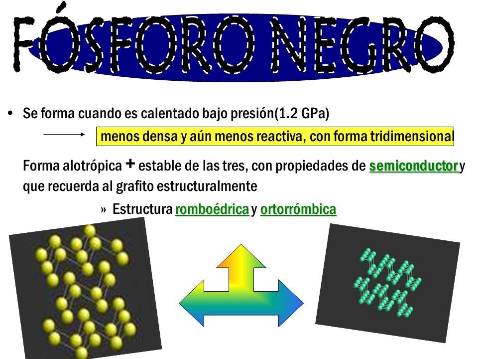 FÓSFORO NEGRO Se forma cuando es calentado bajo presión(1.2 GPa)