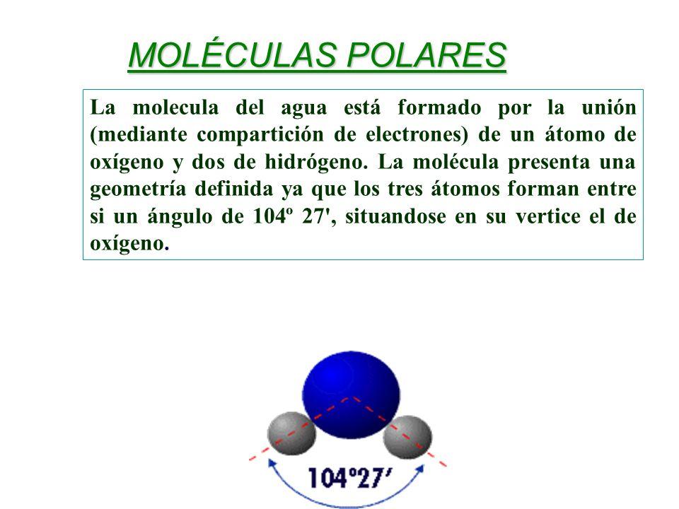 MOLÉCULAS POLARES