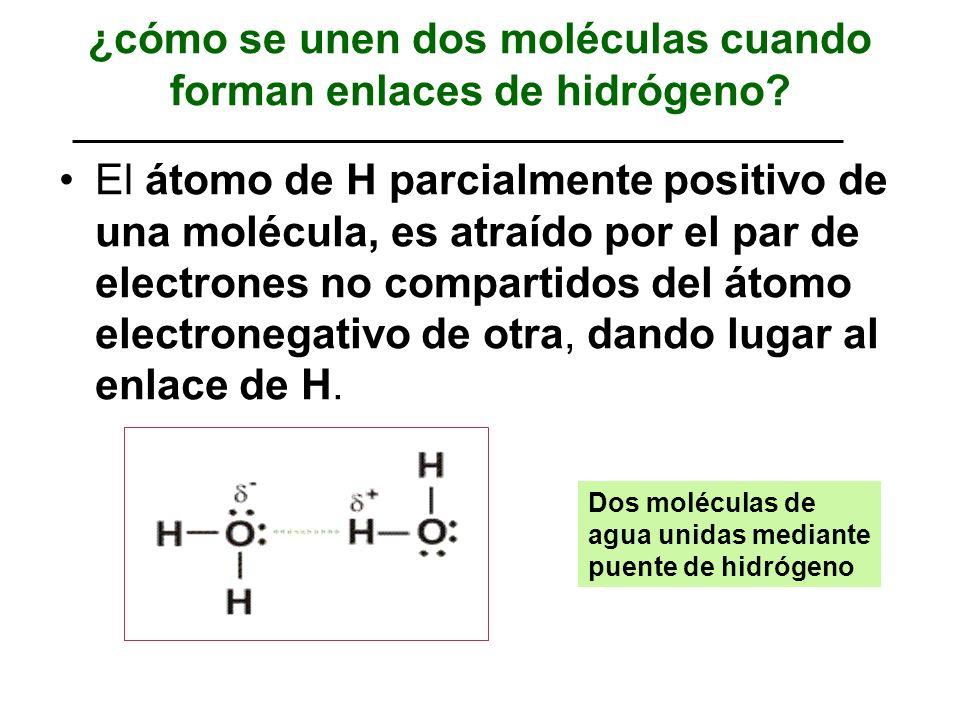 ¿cómo se unen dos moléculas cuando forman enlaces de hidrógeno