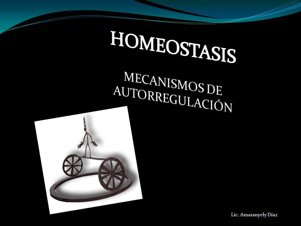 MECANISMOS DE AUTORREGULACIÓN