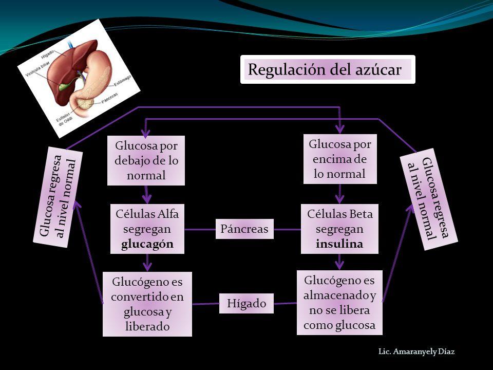 Regulación del azúcar Glucosa por debajo de lo normal