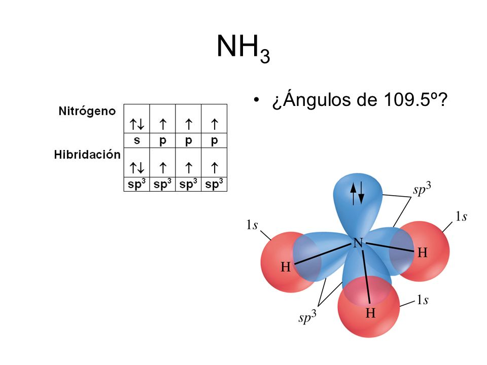 NH3 ¿Ángulos de 109.5º 58