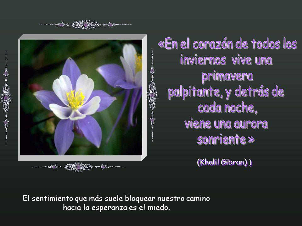 «En el corazón de todos los inviernos vive una primavera