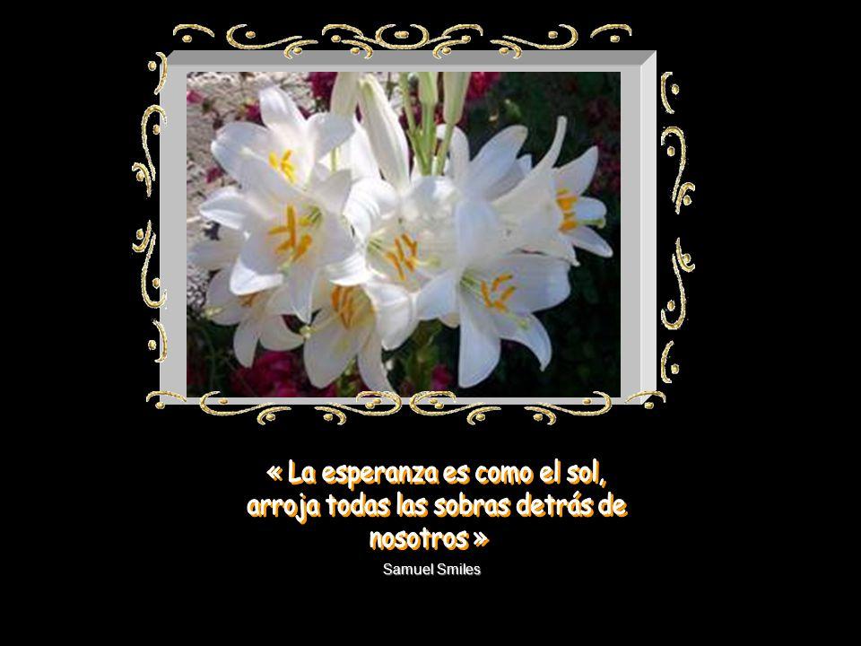 « La esperanza es como el sol, arroja todas las sobras detrás de