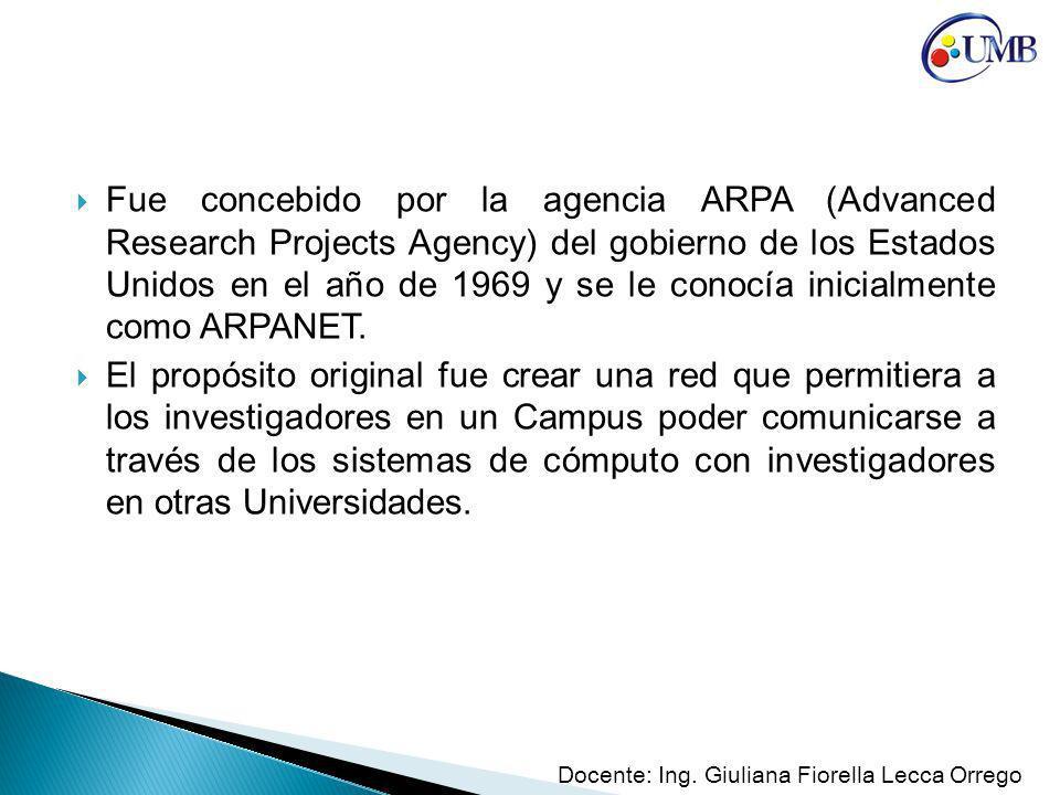 Fue concebido por la agencia ARPA (Advanced Research Projects Agency) del gobierno de los Estados Unidos en el año de 1969 y se le conocía inicialmente como ARPANET.