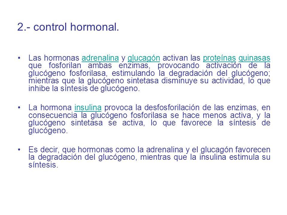 2.- control hormonal.