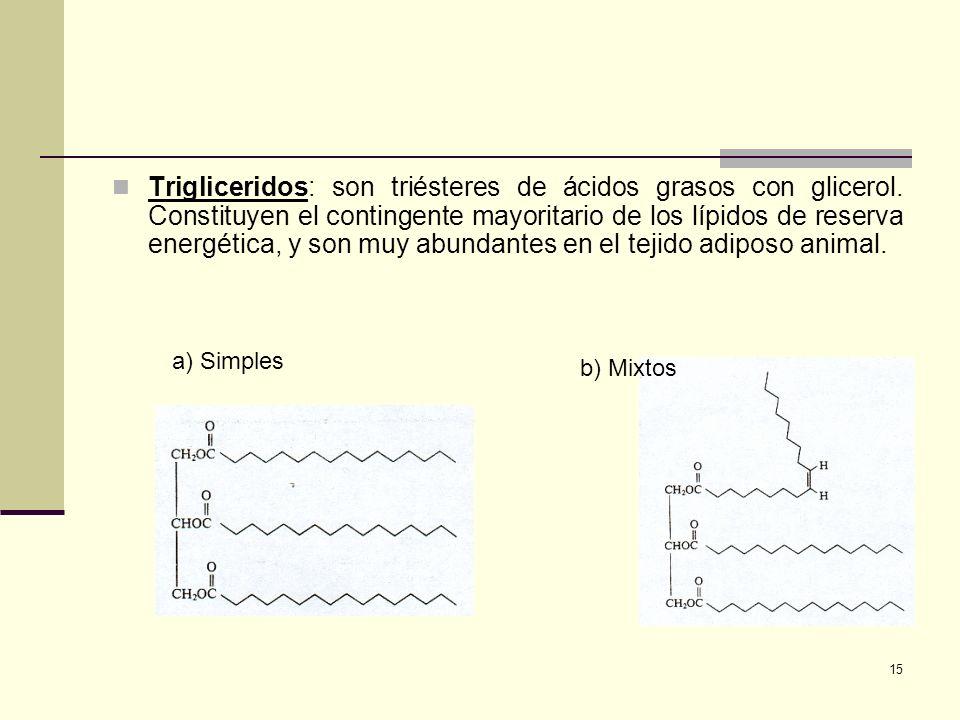 Trigliceridos: son triésteres de ácidos grasos con glicerol