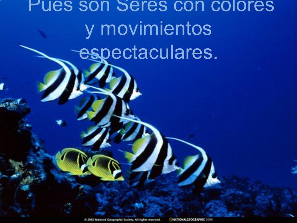 Pues son Seres con colores y movimientos espectaculares.