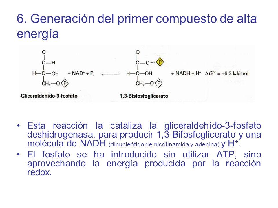 6. Generación del primer compuesto de alta energía