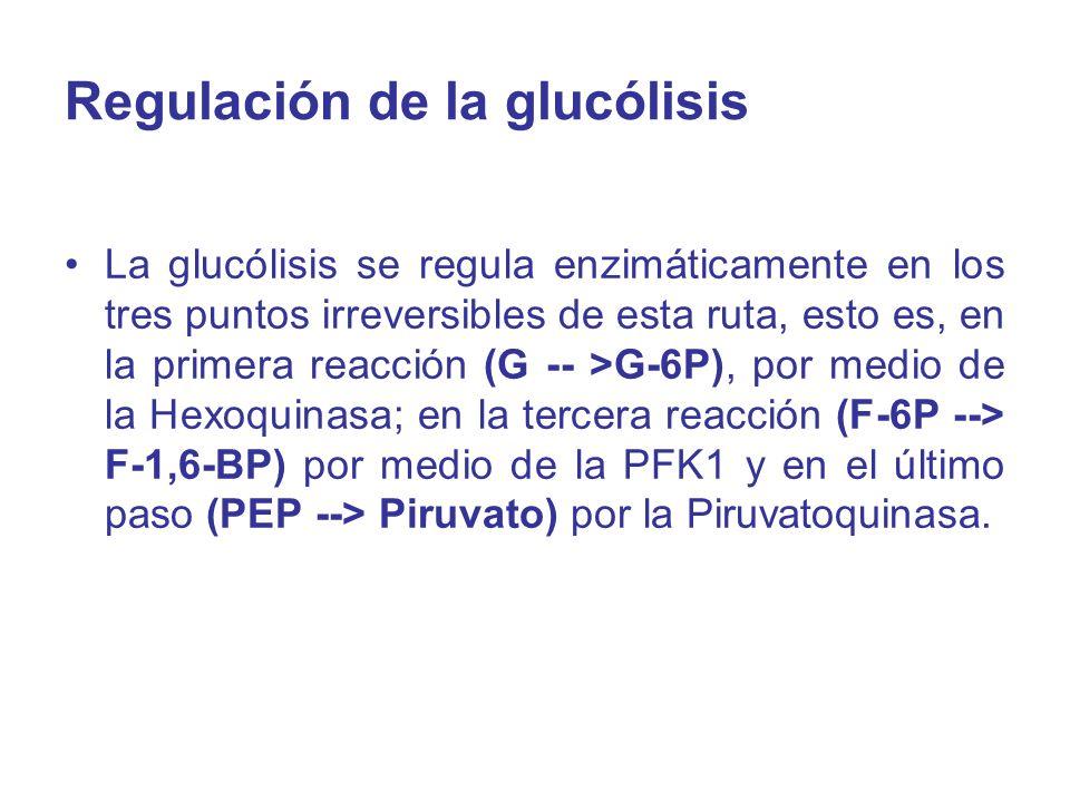 Regulación de la glucólisis