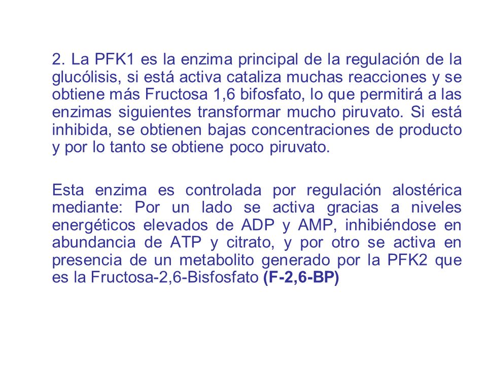 2. La PFK1 es la enzima principal de la regulación de la glucólisis, si está activa cataliza muchas reacciones y se obtiene más Fructosa 1,6 bifosfato, lo que permitirá a las enzimas siguientes transformar mucho piruvato. Si está inhibida, se obtienen bajas concentraciones de producto y por lo tanto se obtiene poco piruvato.