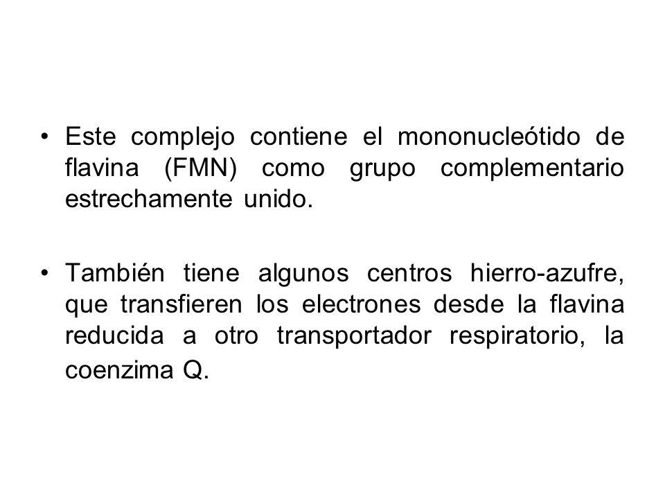 Este complejo contiene el mononucleótido de flavina (FMN) como grupo complementario estrechamente unido.
