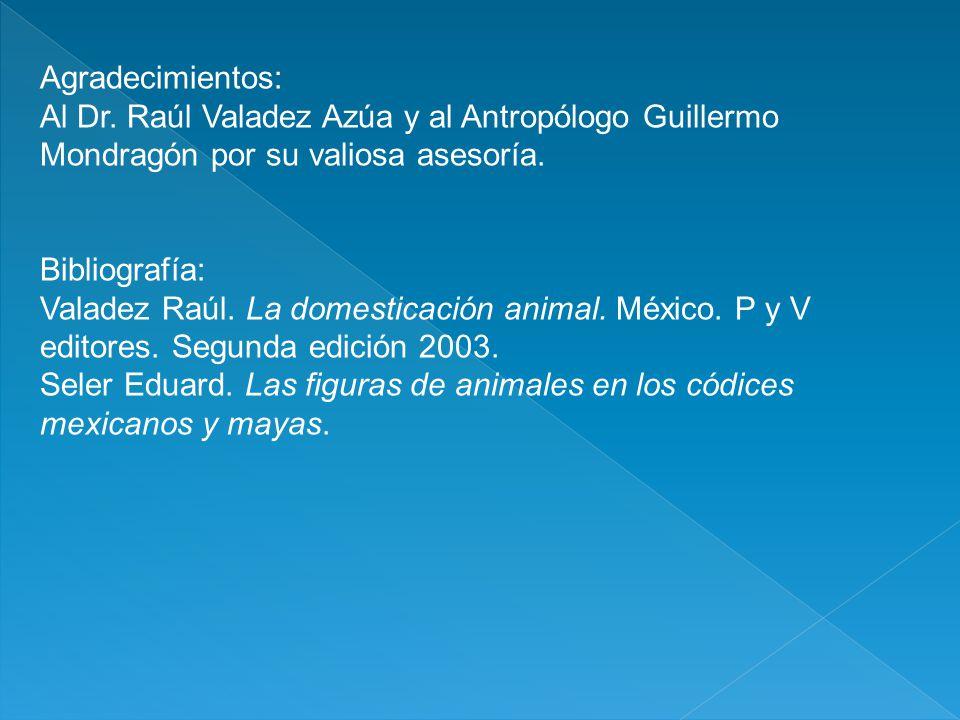 Agradecimientos: Al Dr. Raúl Valadez Azúa y al Antropólogo Guillermo Mondragón por su valiosa asesoría.