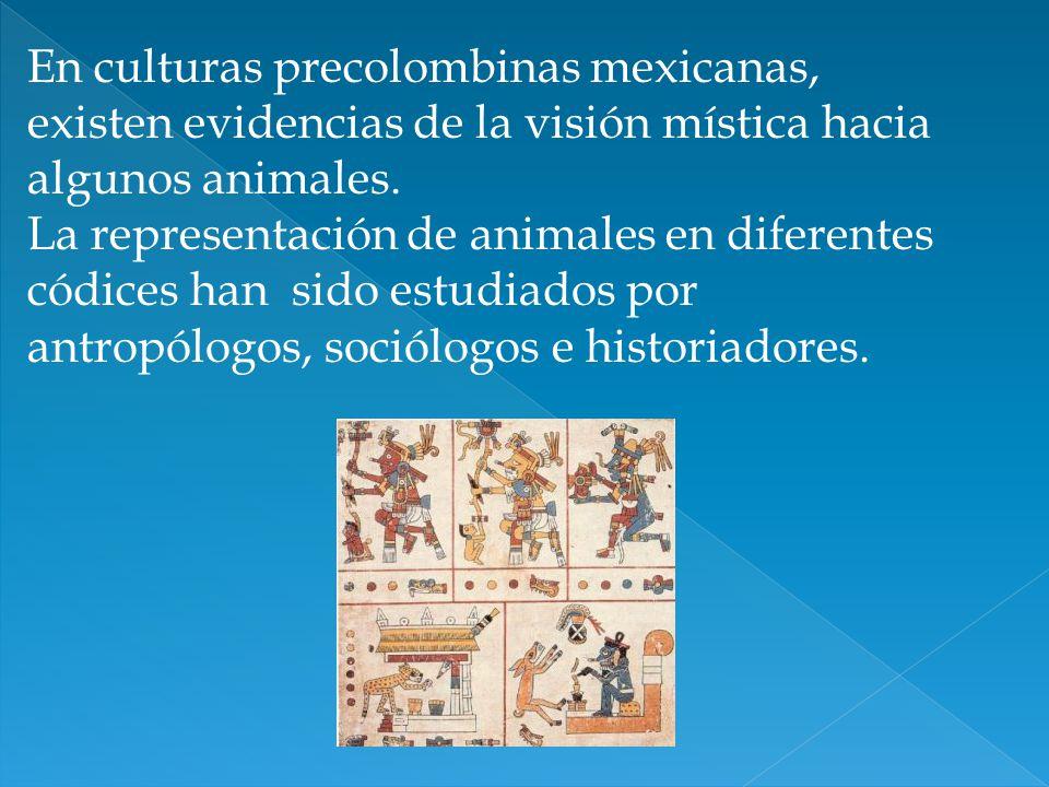 En culturas precolombinas mexicanas, existen evidencias de la visión mística hacia algunos animales.