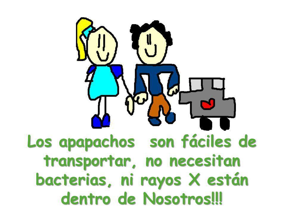 Los apapachos son fáciles de transportar, no necesitan bacterias, ni rayos X están dentro de Nosotros!!!