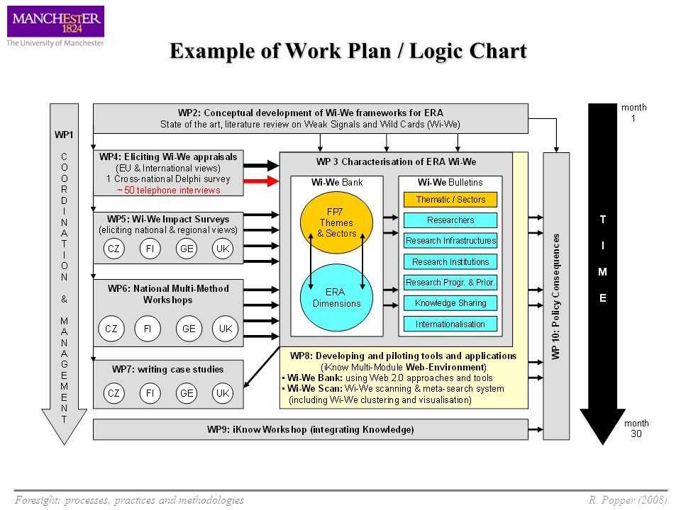 Example of Work Plan / Logic Chart