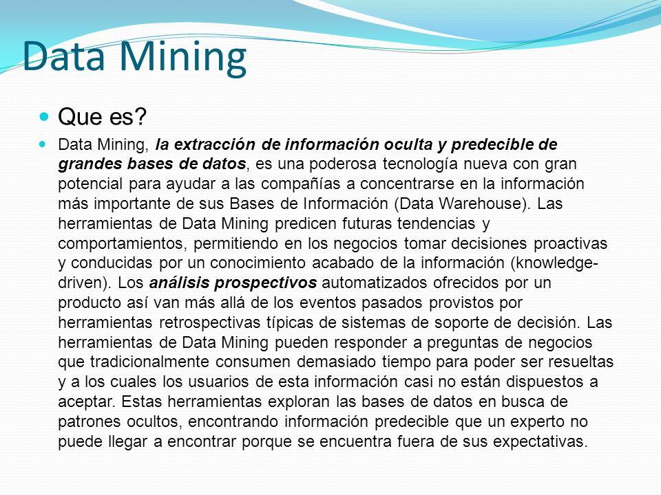 Data Mining Que es