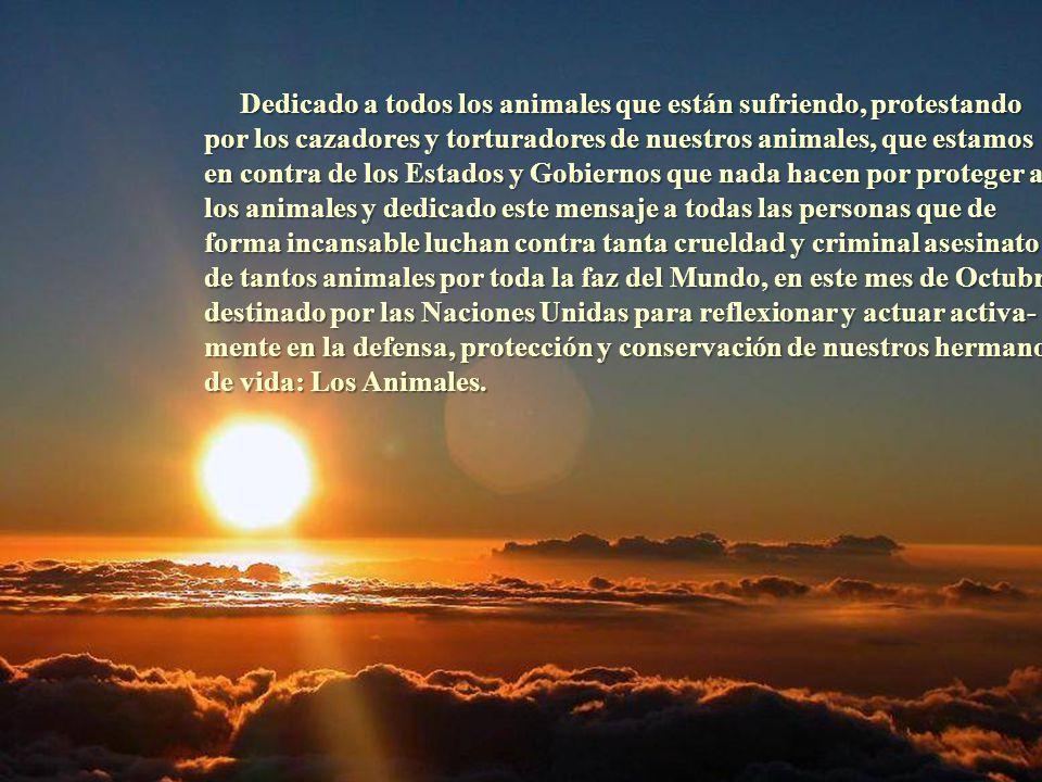 Dedicado a todos los animales que están sufriendo, protestando