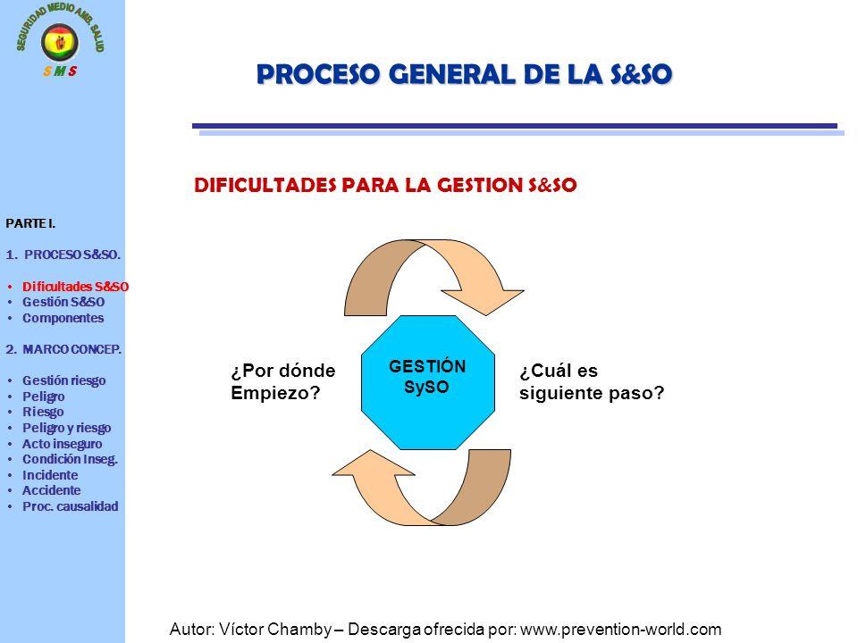 PROCESO GENERAL DE LA S&SO