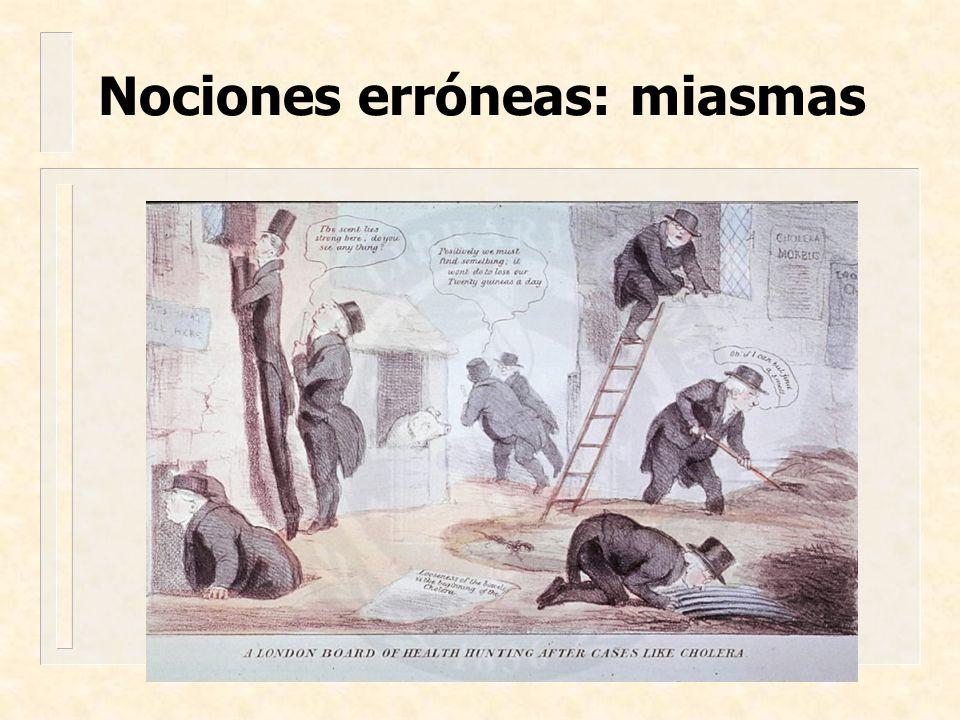 Nociones erróneas: miasmas