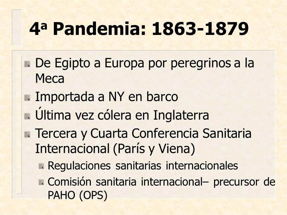4a Pandemia: 1863-1879 De Egipto a Europa por peregrinos a la Meca