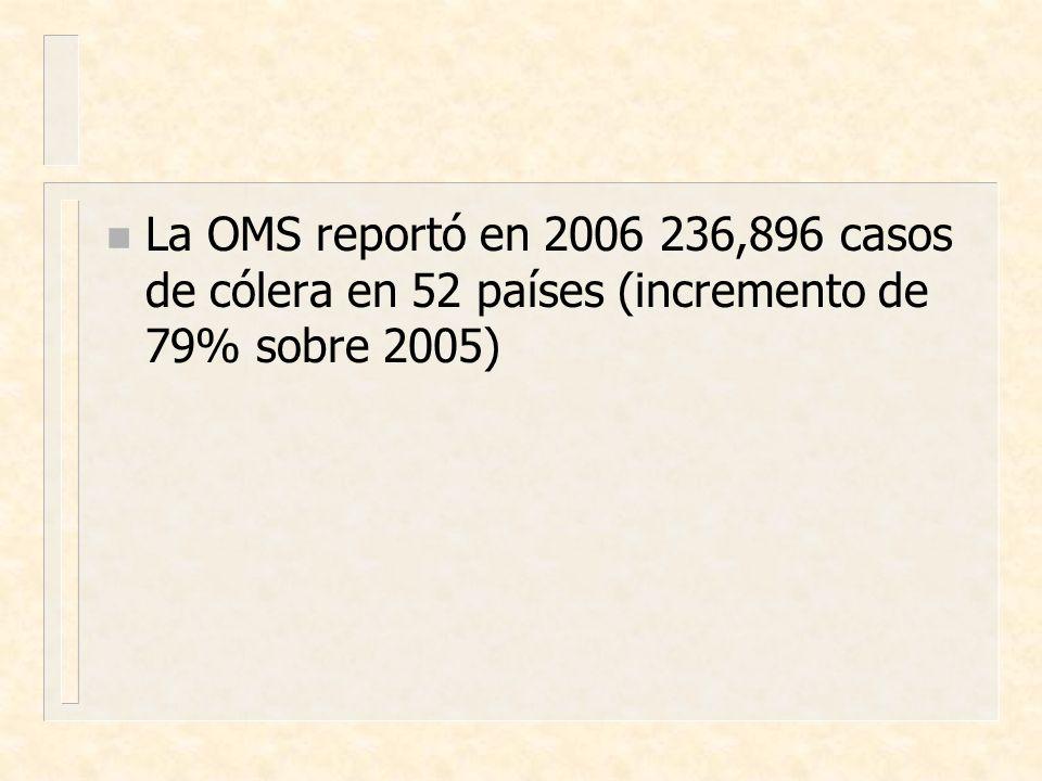 La OMS reportó en 2006 236,896 casos de cólera en 52 países (incremento de 79% sobre 2005)